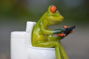 カエルとトイレ2