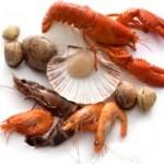甲殻類アレルギーの症状を紹介!治療は出来るの?