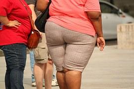 太ってる人0