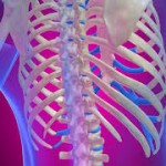 肋骨骨折の症状とは?原因や治療方法も紹介!