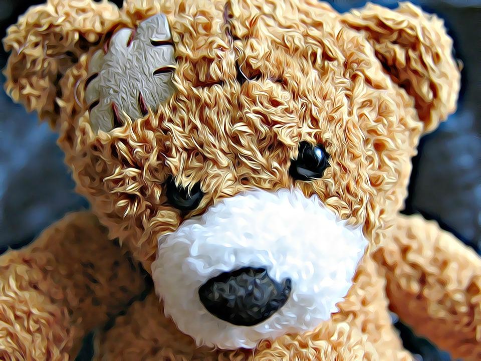 bear-2003391_960_720