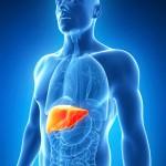 C型肝炎は完治するの?症状や治療方法を紹介!