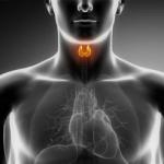 甲状腺機能亢進症の症状をチェック!原因や治療方法も紹介!