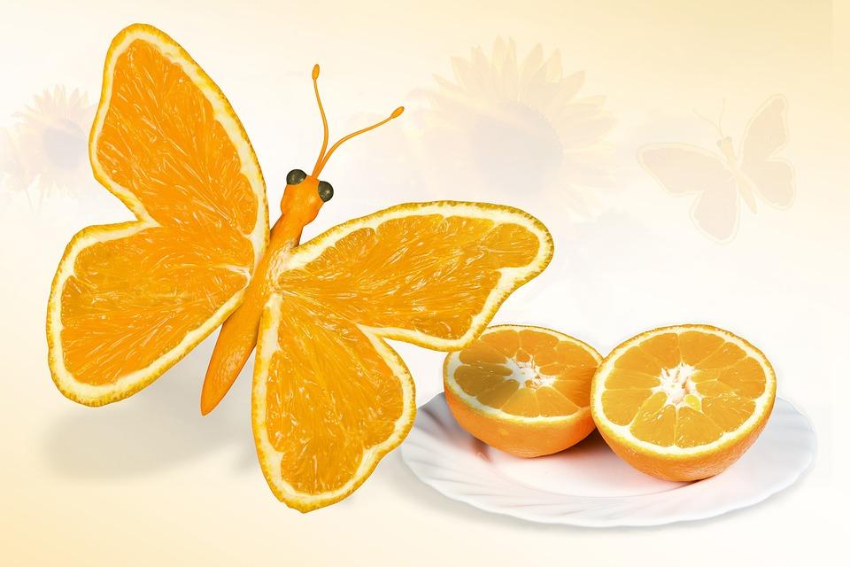 butterfly-697873_960_720
