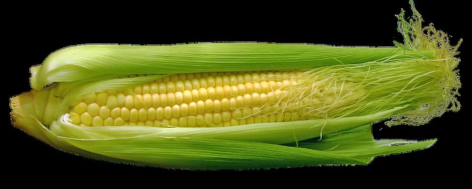 corn-667678_960_720