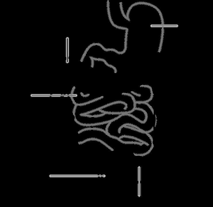 diagram-41638_960_720