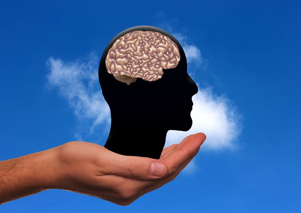 脳のおもさ