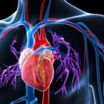 肺高血圧症って何?症状や治療方法、原因を理解しておこう!