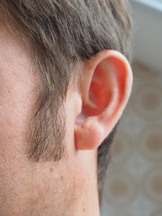 ear-1355652_960_720