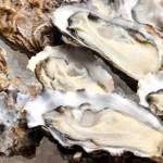 牡蠣の食あたりの症状とは?潜伏期間や種類、対処法を紹介!