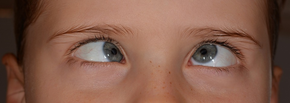 目のトレーニング