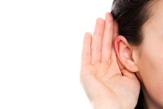 耳の中の音