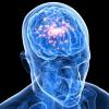 セロトニン症候群とは?症状や原因、治療方法を紹介!
