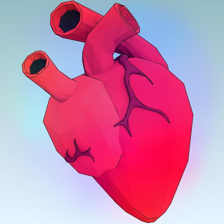 heart-1164567_960_720