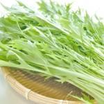 水菜の栄養って知ってる?健康効果や成分を知っておこう!