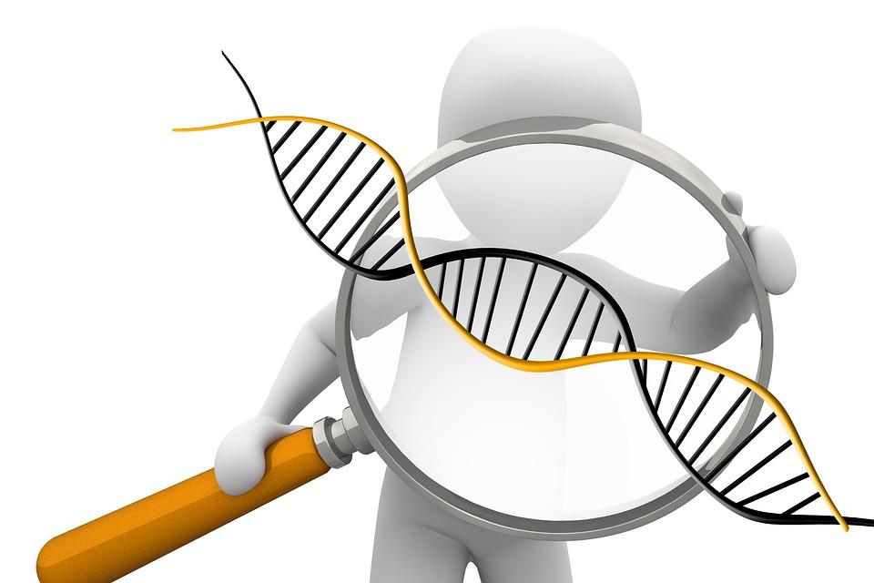 遺伝子01