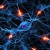 ニューロパチーとは?種類や症状、治療方法を紹介!