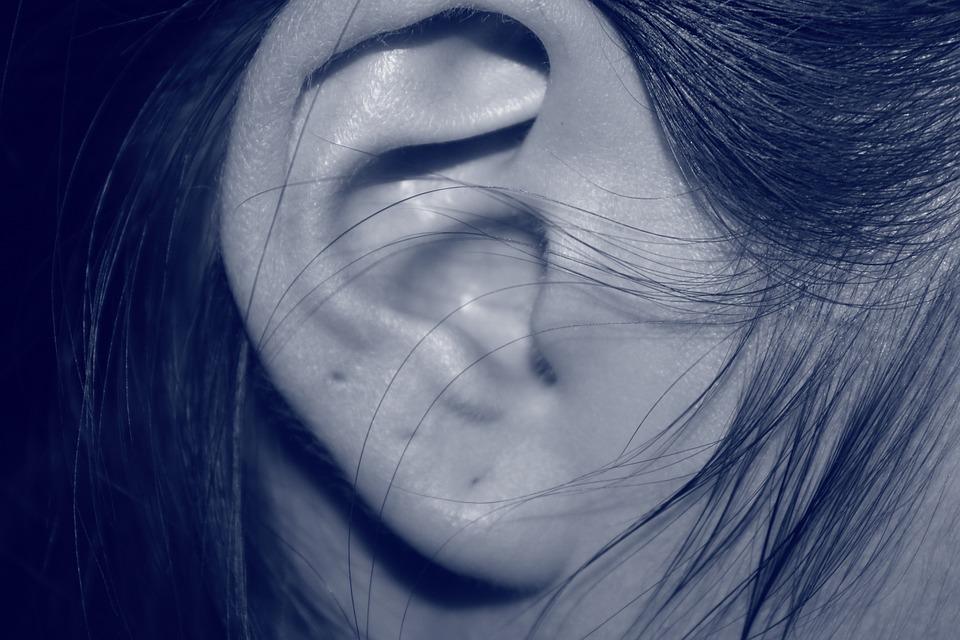 ear-207405_960_720