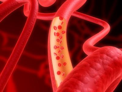 血管が細い