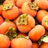 柿の栄養は何が凄い?成分や効果、選び方などを紹介!