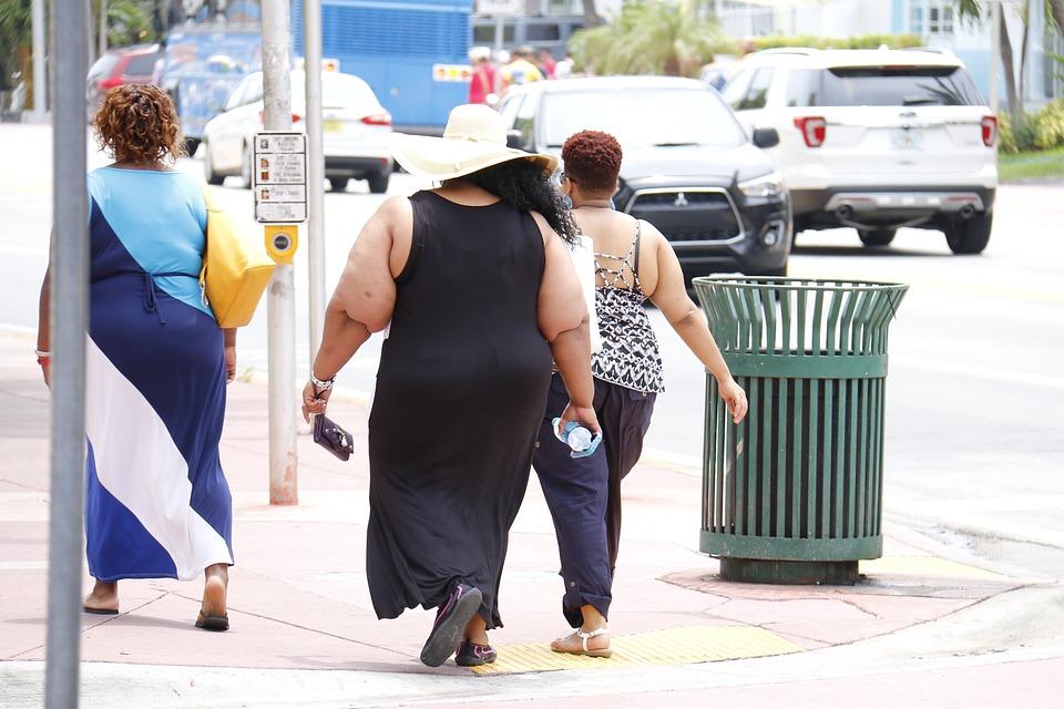 太った人0