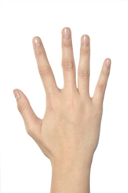 手の甲01