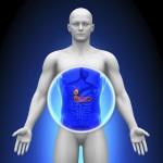 胆嚢腺筋症とは?症状や原因は?治療するには手術が必要なの?