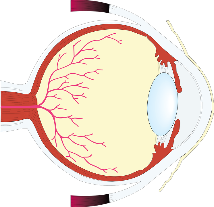 eye-1132249_960_720