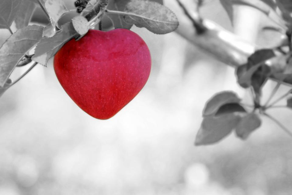 heart-apple