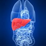 肝性脳症ってなに?症状や原因、治療法を理解しよう!状態で変わる危険度とは?