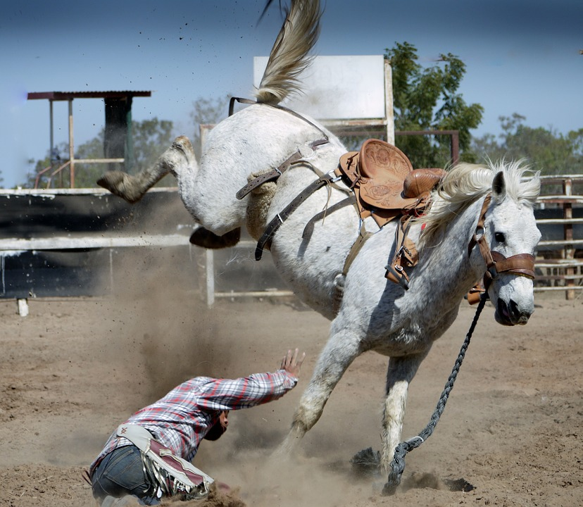 rodeo-1010051_960_720