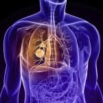 肺腫瘍は早期発見が大事!治療法や症状、原因を紹介!良性でも注意が必要?