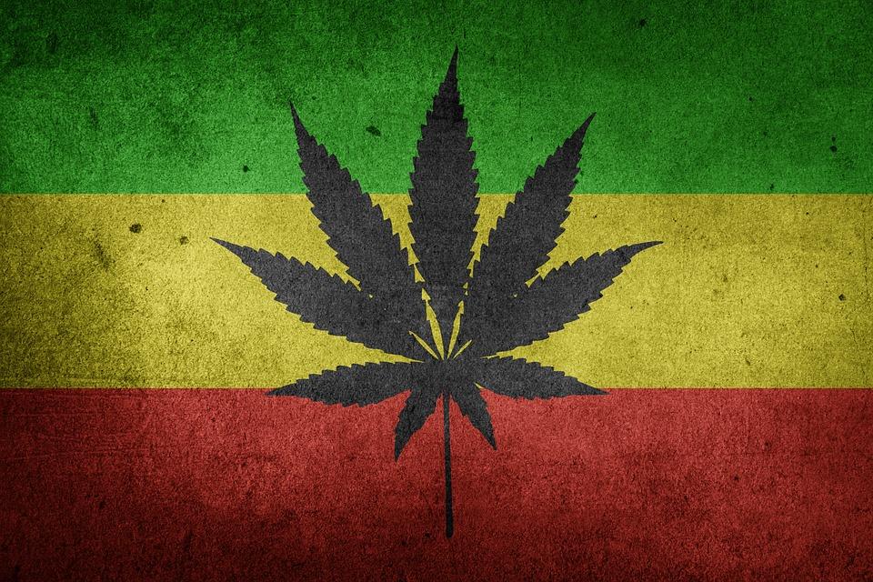 marijuana-1556358_960_720