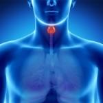 プランマー病とは?症状や原因を知ろう!治療法と予防法も詳しく紹介!