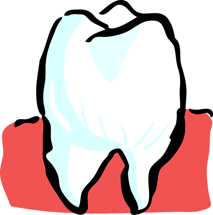 tooth-25594_960_720
