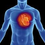 肥大型心筋症の治療法や症状、原因を知ろう!心電図で検査することが可能?