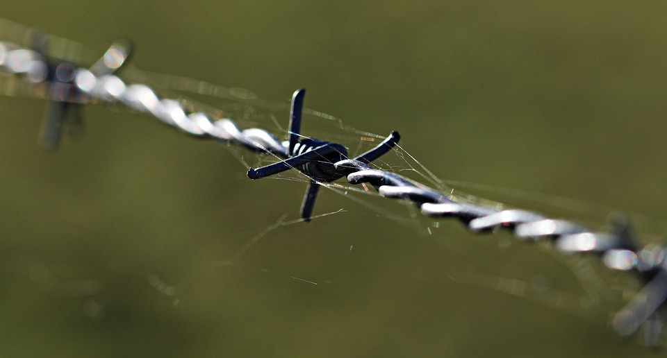 barbed-wire-1785533_960_720