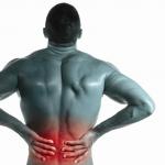 腰痛の原因となる筋肉を知ろう!それらの筋肉を鍛える方法を知って予防しよう!