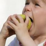 栄養失調の症状をチェックしよう!原因や治療法は?判断基準も紹介!
