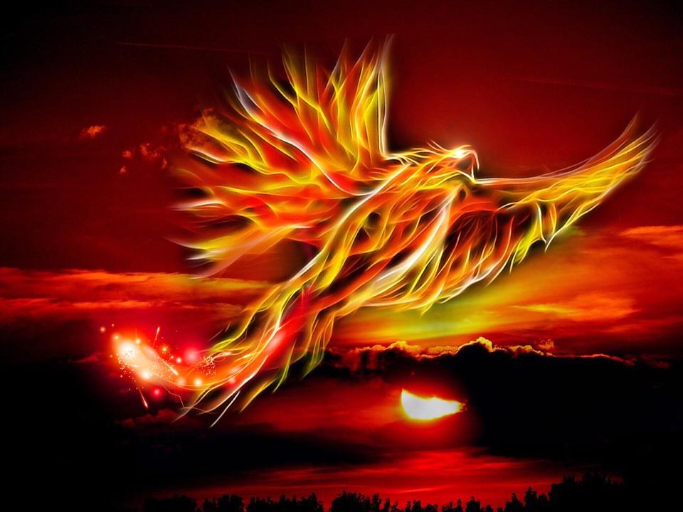 phoenix-500469_960_720%e3%83%95%e3%82%a7%e3%83%8b%e3%83%83%e3%82%af%e3%82%b9
