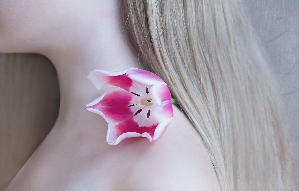 tulip-1309666_960_720