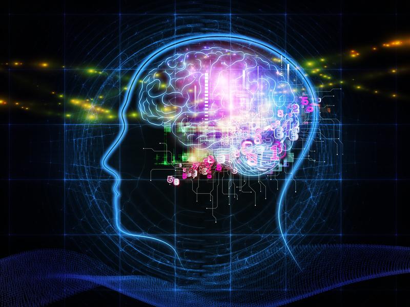 脳視床下部