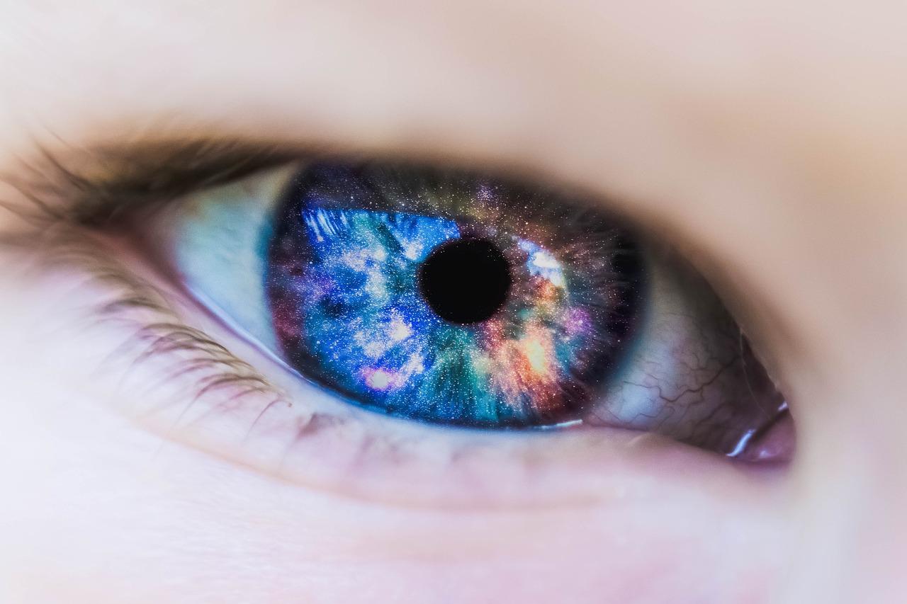 眼瞼黄色種