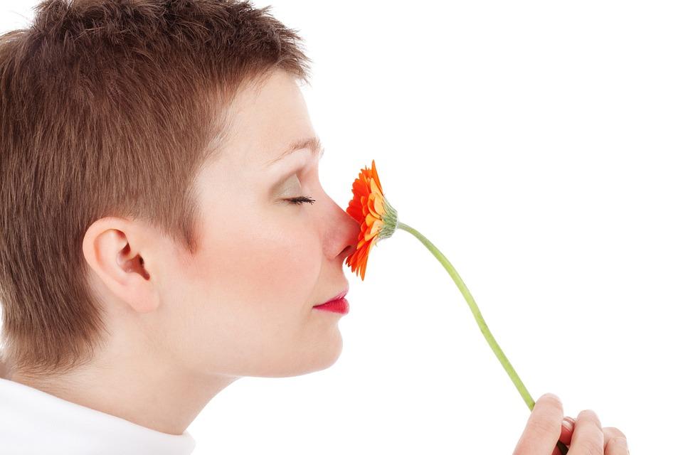 adult-19033_960_720鼻と花