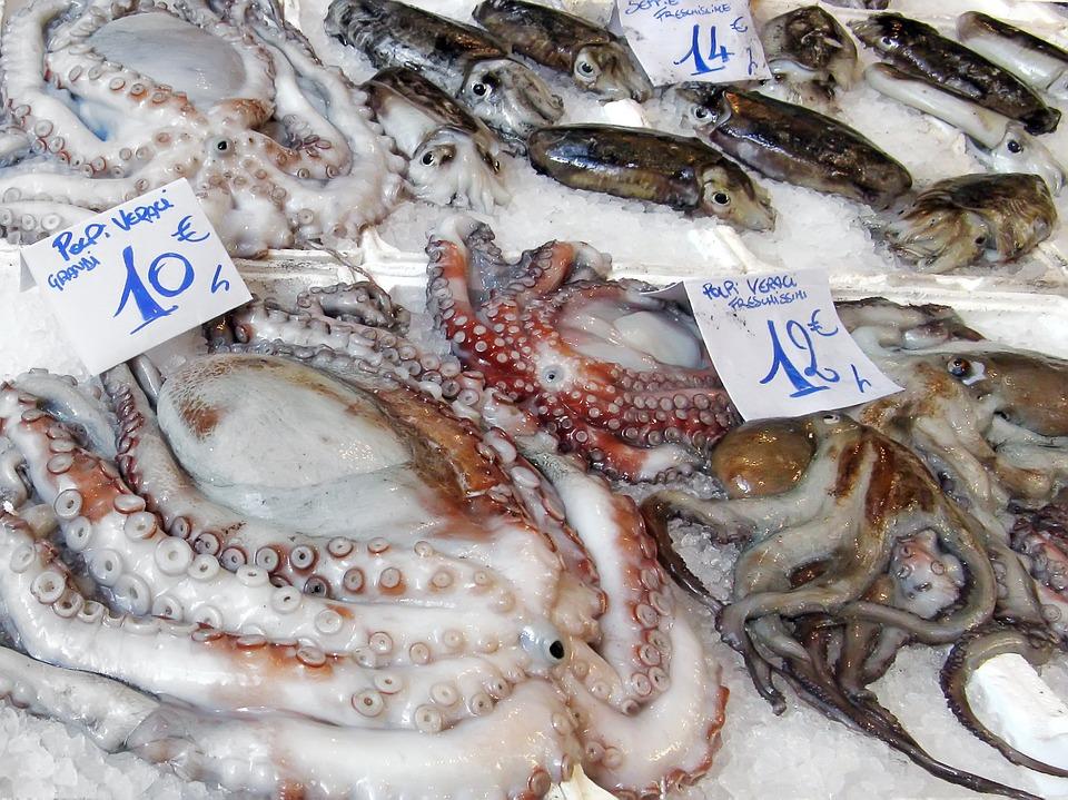 fish-market-739920_960_720