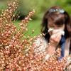 花粉症の症状で喉が痛い!原因や治し方を知ろう!予防するにはどうする?