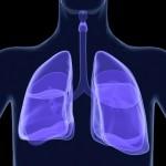 気道過敏症とは?症状や原因、対処法や治療法を紹介!