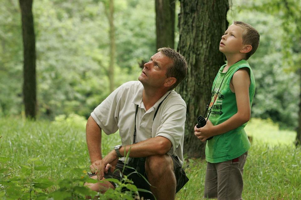 birdwatching-387426_960_720父と息子