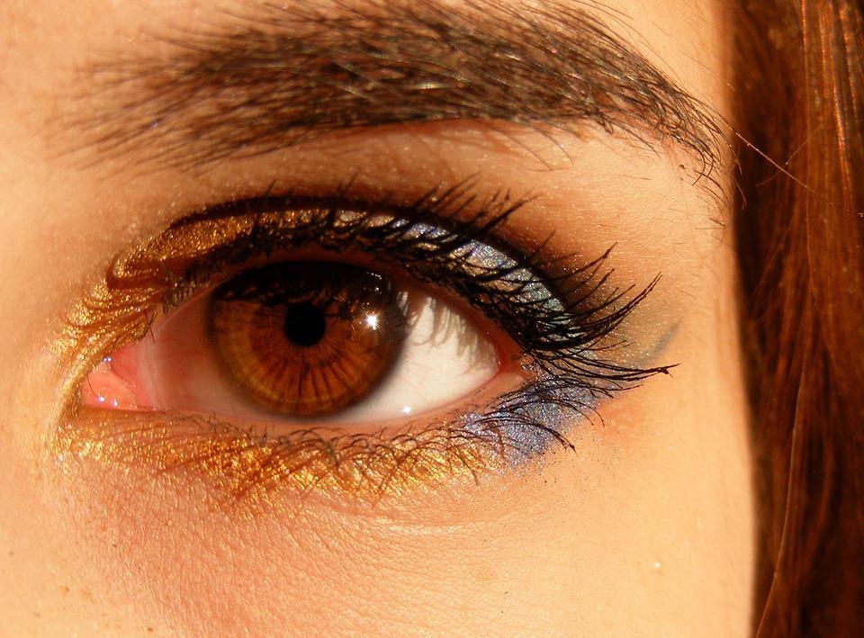 brown-518324_960_720女の目