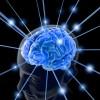 高次脳機能障害の症状を知ろう!回復するためのリハビリ方法も紹介!